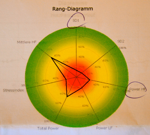 rangdiagramm7